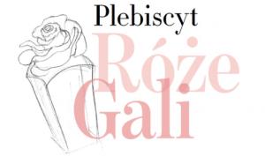 N31 by Robert Sowa partnerem Róż Gali